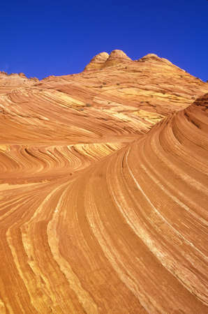 ut: Close up of sandstone stripes, The Wave on Kenab Coyote Butte, BLM, Slot Canyon, UT