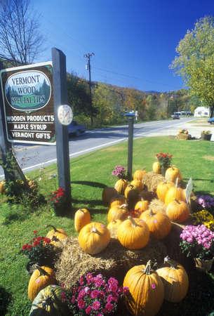 Pumpkins and Autumn flower arrangement along Scenic Route 100, VT Editorial