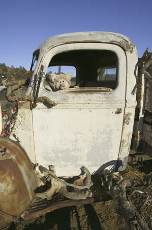 corroding: Teddy Bear in rusty old truck on Route 33, near Cuyama, California