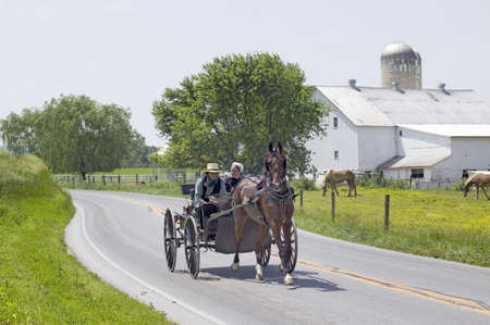 amish: Amish horse and carriage driving past barn in Lancaster County, Pennsylvania