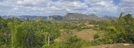 Vista tropical del Valle de Viales, en el centro de Cuba Foto de archivo