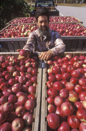 grower: Apple grower transporting yield from VT to NH