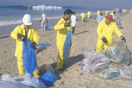 Teams of environmental workers organizing cleanup efforts of the oils spill in Huntington Beach, California