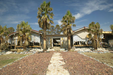 Palm tree walkway leads to house destroyed by Hurricane Ivan in Pensacola Florida 에디토리얼