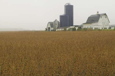 middle america: A rural farmhouse in Ohio Editorial
