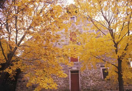 grist: Esterno di Moravia Grist Mill in autunno, New Jersey