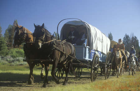 cowboy on horse: Living History participants in wagon train near Sacramento, CA