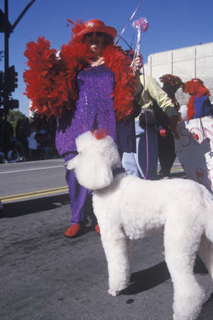 Plus sized woman with a poodle marching in the Doo Dah Parade, Pasadena, California