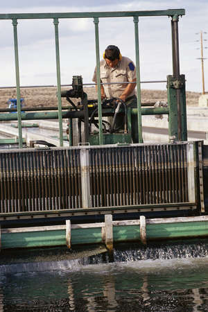 replenishing: Worker cleaning water at fish hatchery
