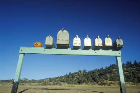 humor: Row of country road mailboxes and pumpkin on Highway 33, Ojai, CA