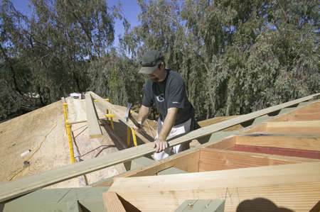 tongue and groove: Carpenter hammering tongue & groove board on roof of new house construction, Ojai, California