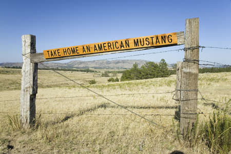 Sign for Take Home an American Mustang at the Black Hills Wild Horse Sanctuary, the home to Americas largest wild horse herd, Hot Springs, South Dakota