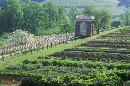 jefferson: Vegetable garden and pavilion at Monticello, home of Thomas Jefferson, Charlottesville, Virginia