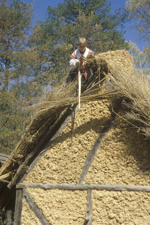 thatched roof: Participant working on thatched roof in historic Jamestown, Virginia, site of the first English Colony