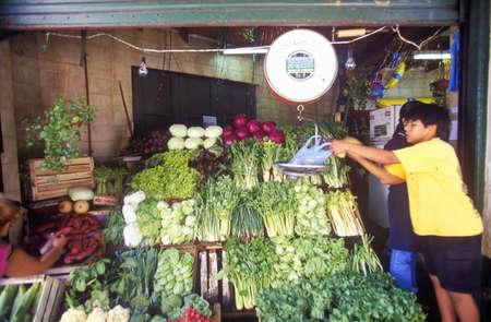 ブエノスアイレス、アルゼンチンの野菜市場で生産します。
