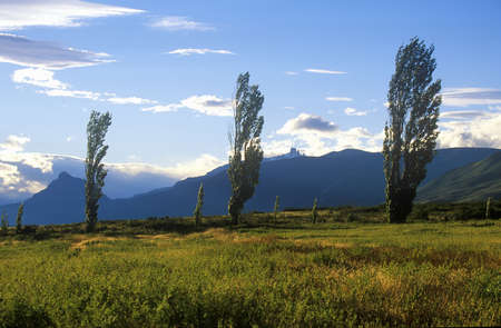 photographies: Landscape of trees and mountains in El Calafate, Patagonia, Argentina Editorial
