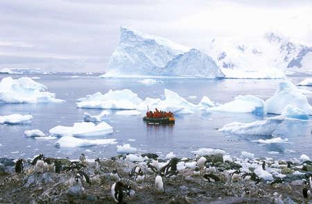 turismo ecologico: Turistas ecológicos en lancha Zodiac inflable observar pingüinos Gentoo en Puerto Paraíso, en la Antártida
