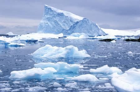 photographies: Icebergs in Paradise Harbor, Antarctica