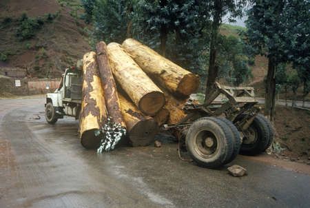 logging truck: Logging truck accidental log spill, Kunming, Yunnan Province, Peoples Republic of China Editorial