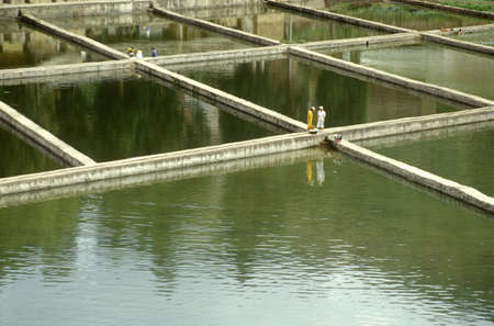 Aquaculture fish ponds in Kunming, Peoples Republic of China