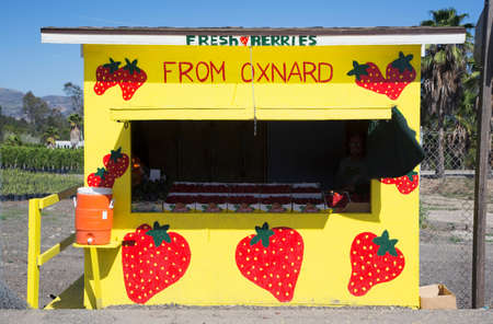 roadside stand: Fresh fruit yellow roadside stand, Route 126, Santa Paula, California, USA Stock Photo