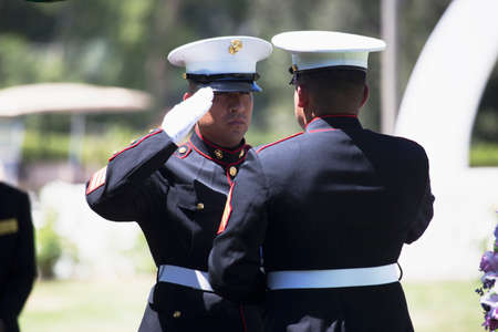 soldiers: Marine folds flag at Memorial Service for fallen US Soldier Editorial