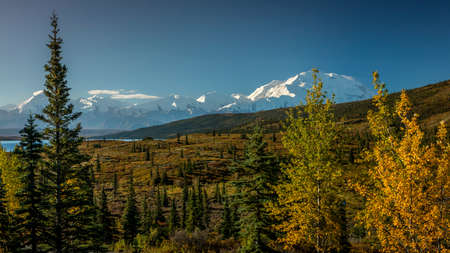 Mount Denali previously known as Mount McKinley, the highest mountain peak in North America, at 20, 310 feet above sea level. Alaska Mountain Range, Denali National Park and Preserve, Autumn Color.
