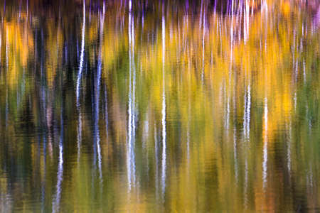 SEPTEMBER 19, 2018 - COLORADO, USA, Impressionistic Aspen water reflections outside of Telluride Colorado