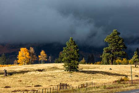 OCTOBER 8, 2014 - Colorado, USA - Autumn Color in Colorado, Landscape Publikacyjne