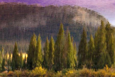 SEPTEMBER 19, 2018 - COLORADO, USA, Impressionistic pine trees at Molas Lake, South of Silverton, Route 550, Colorado