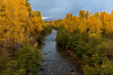 OCTOBER 8, 2014 -  Uncompahgre River, Colorado, USA - Autumn Color in Colorado, Landscape - looking toward Telluride