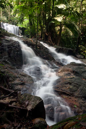 institute: Forest Research Institute Malaysia Waterfall