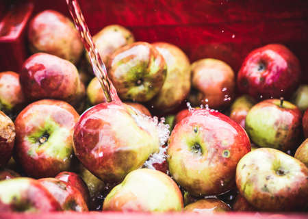 Water over the apples