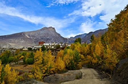 very nice view on the way to muktinath photo