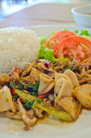 basil squid served with rice in thailand photo