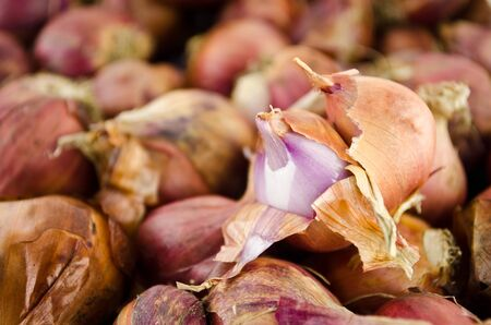 shallot is ingredient of alot of thai food and catchup Stock Photo - 13408019