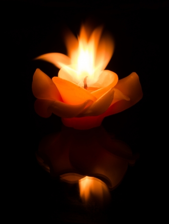 flower candle on fire against dark background photo