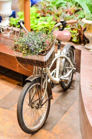 colorful flower on the bicycle photo