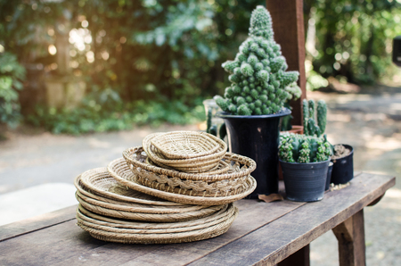 hand made rattan dish in front of cactus pot