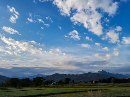 green field against blue sky, country view in thailad