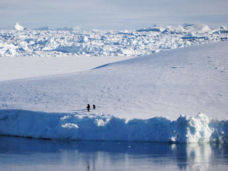 ice sheet: Two penguins on floating ice sheet in Antarctica Stock Photo