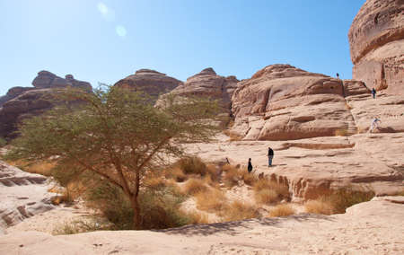nabatean: canyon landscape in Al-Hijr Al Hijr archaeological site Madain Saleh in Saudi Arabia