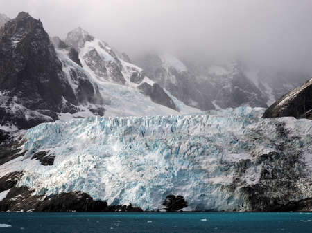 south georgia: Glacier in Drygalski Fjord in South Georgia Antarctica