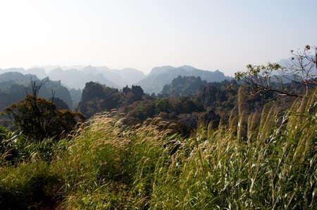 vegetation: Laos mountain landscape and vegetation