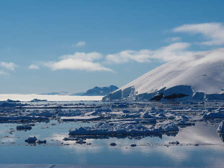 weddell: Antarctica blue iceberg landscape ocean mirrow reflection