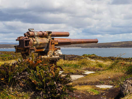 cannon gun: Old rusty naval gun artillery cannon pointing at harbour at Gypsy Cove on Falkland Islands