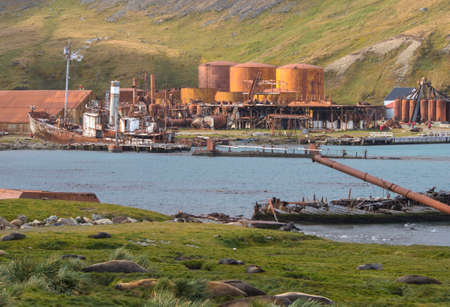 blubber: Old relic shipwreck in front of old rusting boilers, factory buildings and whale oil storage tanks at the abandoned whaling station in Grytviken, South Georgia Island