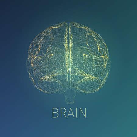 neurology: Abstract brain illustration. Xray view inside head. Neurology banner fow web