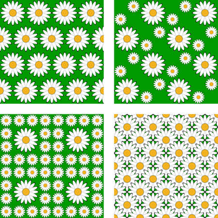 margerite: Design seamless flower pattern. Vector art