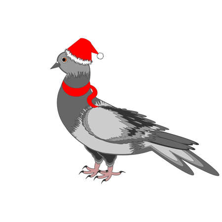A Christmas dove on a white background. Vector-art illustration